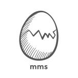 NEW LOGO_2016_MMS